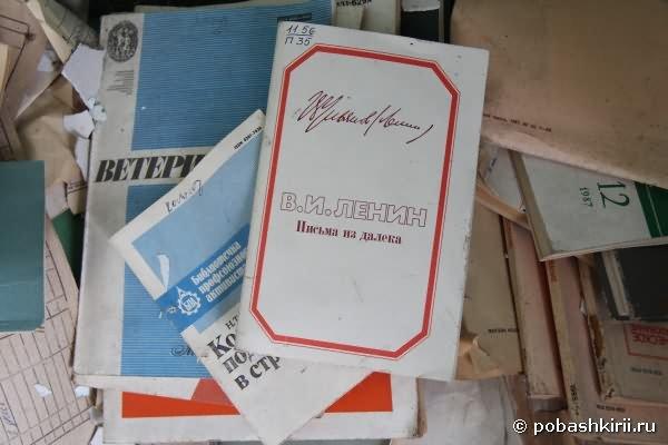 В. И. Ленин. Письма из далека