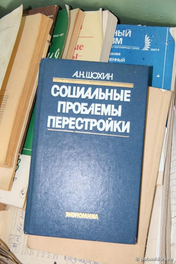 """Книга """"Социальные проблемы перестройки"""""""