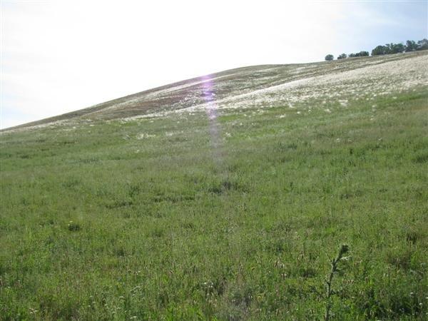 Аулия-тау в Башкирии