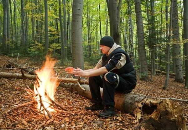Если потерялся в лесу, то как выжить?