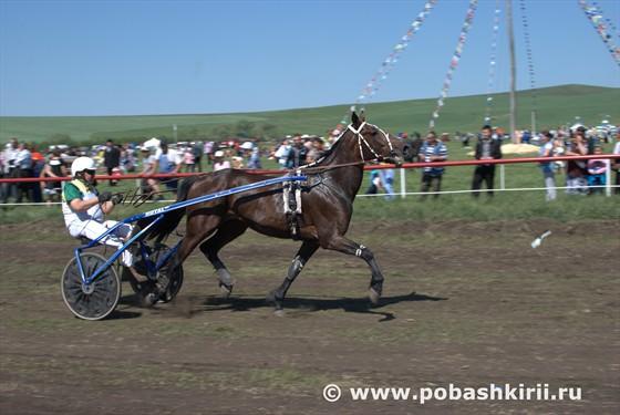 заезды башкирских конников