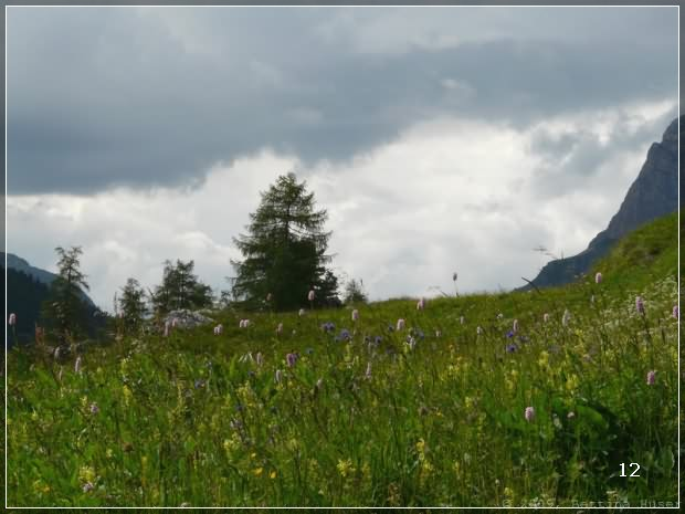 12_schweiz-naturfotos_hueser.ch_4.jpg