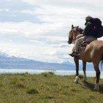 С лошадьми по конному туристическому маршруту