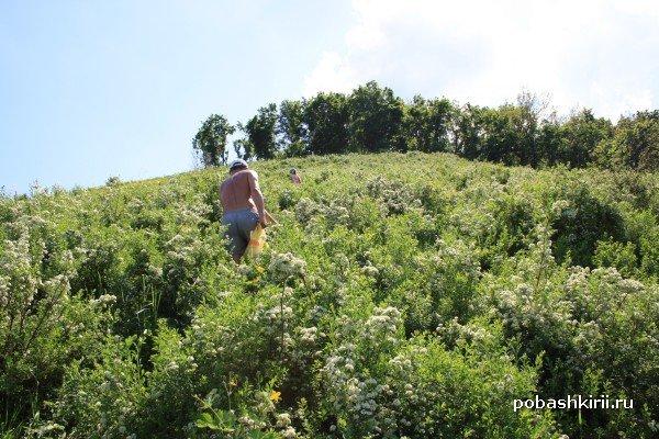 Восхождение на гору Торатау