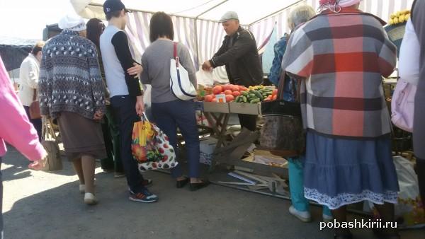 malojaz_salavatskij_rajon_bashkirija_43